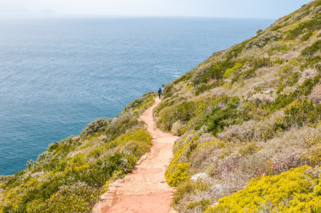 table mountain national park: CAPE TOWN, SOUTH AFRICA - DECEMBER 12, 2014:  Trail from old lighthouse to the viewpoint above new lighthouse at Dias Point in Cape Point in the Table Mountain National Park.