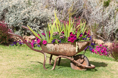 New use for an old wheelbarrow  a planter with colorful flowers Stock Photo