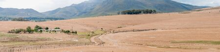 bot: BOTRIVER SOUTH AFRICA  DECEMBER 25 2014: View accross a farm near Bot River in the Overberg region of the Western Cape Editorial
