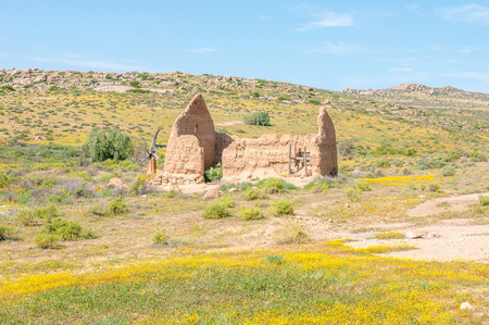 northern african: Ruins in between yellow flowers on the Roof of Namaqualand trail between Skilpad and Soebatsfontein in the Namaqua National Park