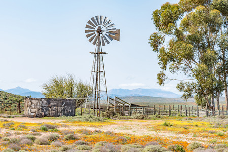 A water pumping windmill, dam and a kraal on a farm next to the road from Spoegrivier to Klipfontein in the Northern Cape Namaqualand region of South Africa