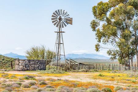 Een water pompende windmolen, dam en een kraal op een boerderij naast de weg van Spoegrivier naar Klipfontein in de Noord-Kaap Namaqualand regio Zuid-Afrika