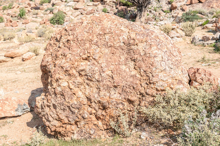 northern african: Orbicular granite, a rare plutonic rock at the  Orbicular Hill near Concordia, a small mining town in the Northern Cape Namaqualand