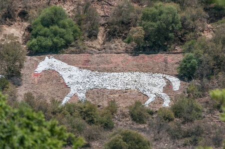 boer: The White Horse on the east side of Naval Hill in Bloemfontein was built from rocks painted white, by British troops stationed in the area during the Anglo-Boer war, as a direction marker for troops