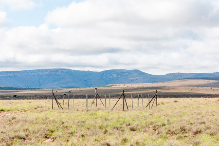 herbivores: A monitoring plot used to study the impact of herbivores on the vegetation in the Mountain Zebra National Park near Cradock in South Africa