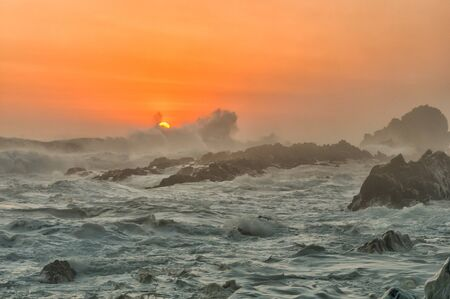spume: Spume in the setting sun, caused by the stormy sea whipping up the seawater into a milky substance when it contains high concentrations of dissolved organic matter
