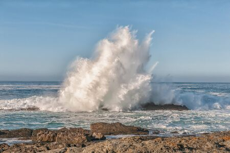 breaking wave: Breaking wave shoots high into the air on the Eastern Cape coast of South Africa