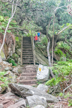 nature conservancy: STORMS RIVER MOUTH, SOUTH AFRICA - MARCH 1, 2016:  Unidentified hikers on the Waterfall Trail which is part of day one of the renowned Otter Trail