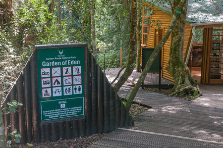 eden: GARDEN OF EDEN, SOUTH AFRICA - MARCH 3, 2016: The entrance to the Garden Of Eden, a network of boardwalk trails through the Tsitsikama Forest Editorial