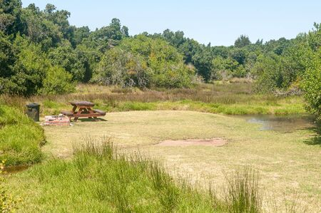 natures: Wetland in the Groot River at the De Vaselot Camp at the town of Natures Valley Stock Photo