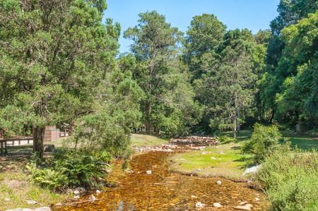 jubilee: Jubilee Creek, a picnic spot in the Knysna Forest near Millwood Stock Photo