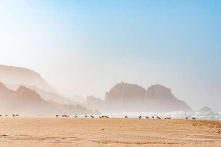 hazy: A hazy view of rocks in the sea at the beach in Noetsie, with seagulls in the front