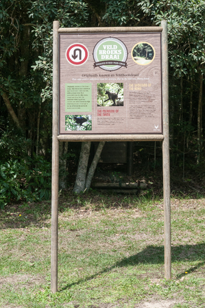 notorious: KNYSNA, SOUTH AFRICA - MARCH 5, 2016: An information board at Veldbroeksdraai, a notorious corner on the road between Knysna and Uniondale near Diepwalle in the Knysna Forest