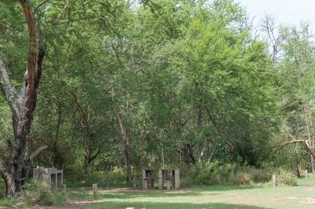 wilderness area: A shaded camping site at Smitskraal in the wilderness area of the Baviaanskloof (baboon valley) Stock Photo