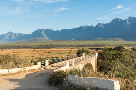 Early morning at a bridge over the Riviersonderend (river without end) on the road between Riviersonderend town and Greyton in the Western Cape Province