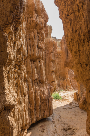 A narrow erosion canyon at the Koranna Mountain near Excelsior in the Free State Province of South Africa