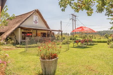 MONKS COWL, SOUTH AFRICA - MARCH 19, 2018: Scrumpy Jacks farm stall and restaurant near Monks Cowl in the Kwazulu-Natal Drakensberg Stock Photo - 104320201