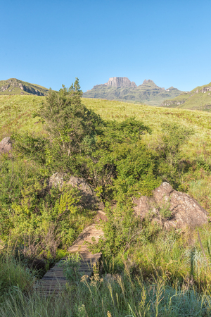 A pedestrian bridge on a hiking trail at Monks Cowl in the Drakensberg. Cathedral peak (left) and Monks Cowl (right) are visible in the back