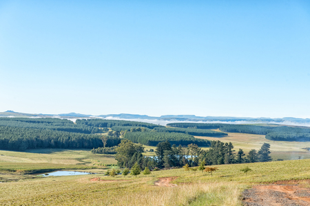 A landscape with plantations at Tortoni near Maclear in the Eastern Cape Province Stock Photo
