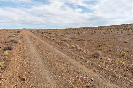 A badly corrugated gravel road in the Tankwa Karoo in the Northern Cape Province of South Africa Фото со стока
