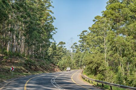 BADPLAAS, SOUTH AFRICA - MAY 2, 2019: A road landscape on the Bothasnek Pass on road R38 between Badplaas and Barberton in the Mpumalanga Province. A vehicle and eucalyptus trees are visible Redakční