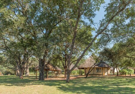 KRUGER NATIONAL PARK, SOUTH AFRICA - MAY 3, 2019: A view of the Malelane Bush Camp in the Kruger National Park. Chalets are visible Redakční