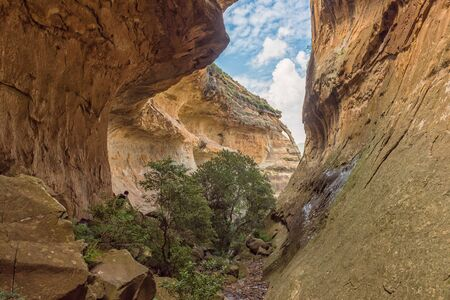 View of Echo Ravine, a sandstone gorge at Golden Gate in the Free State Province