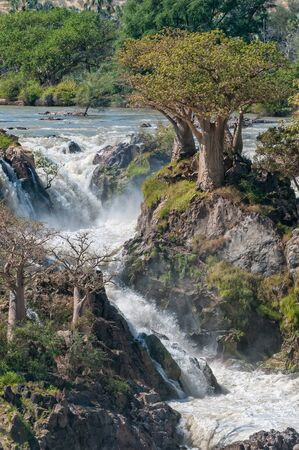 Part of the Epupa waterfalls in the Kunene River. Baobab trees are visible