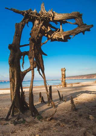 Senão na praia Imagens