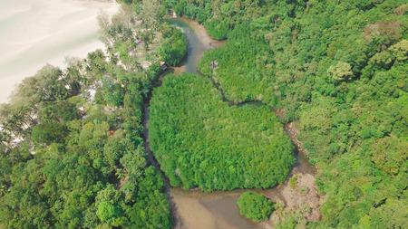 Hearth Islands near the beach in koh good  thailand - shoot by Aerials shot , mangrove forest is beautiful