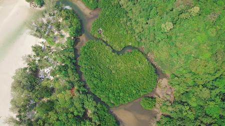 コー良いタイのビーチの近くのハース諸島 - 空中ショットで撮影、マングローブ林は美しいです