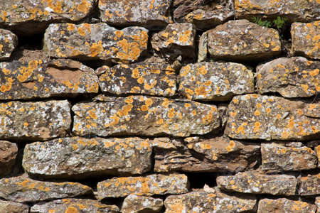 dry stone: Dry stone wall covered with orange lichen