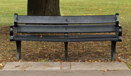 Black Park Bench in front of Tree in Autumn Stock Photo