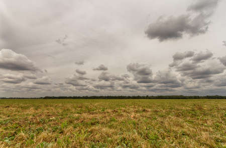 Empty field meadow with cloudy grey sky