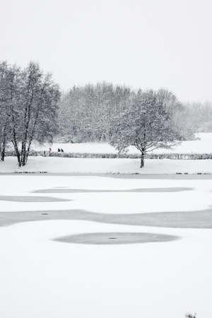 Winter snow scene with trees across frozen lake