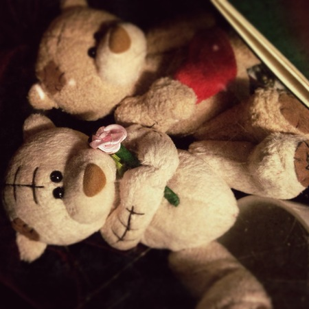 osos de peluche: teddy bears Foto de archivo