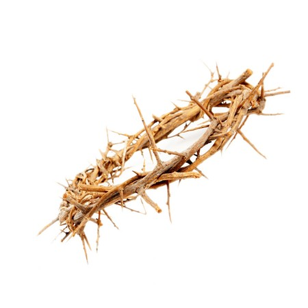 crown of thorns: a crown of thorns