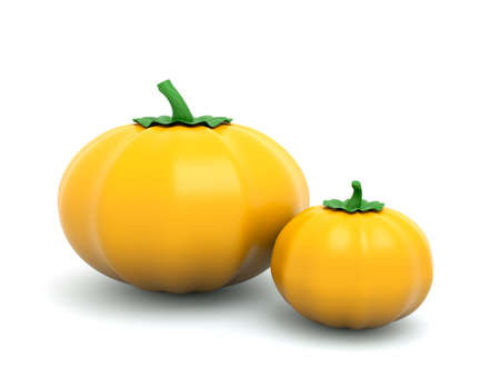 a two pumpkins on white