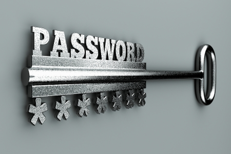 a single key with word password as a concept Stock Photo - 14016276