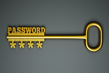 internet safety: a single key with word  password as a concept