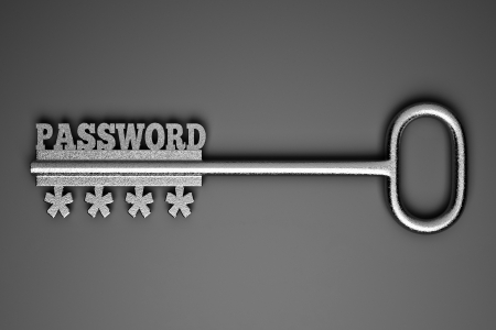 a single key with word  'password' as a concept photo