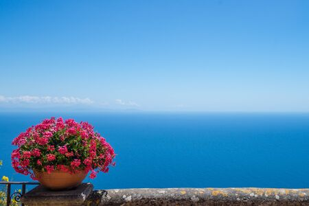 birdeye: Pink flowers and bird-eye view at sea from villa Chimbrone. Amazing background for your design
