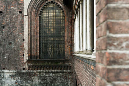 loach: Overgrown loach dried up old brick wall with a Gothic stained-glass windows and white columns. Stock Photo