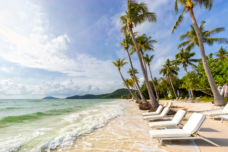 Sunbeds under tropical palms on beautiful Bai Sao beach in Vietnam on Phu Quoc island. Beach's smile