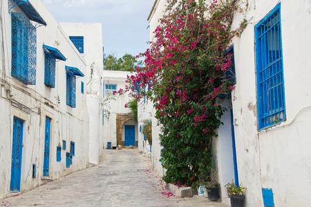 Tunisia white and blue city Sidi Bou Said street Фото со стока