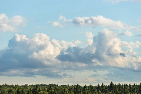 Cumulus clouds on blue sky over forest horizon in summer Banco de Imagens