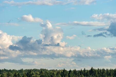 Beautiful cumulus clouds on blue sky over forest horizon in summer