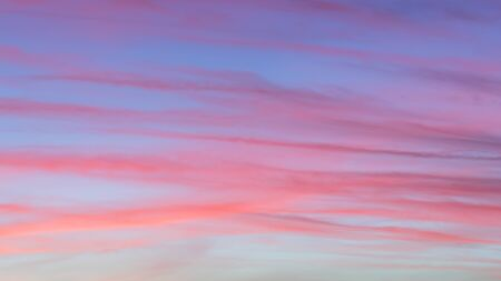 Background of colorful beautiful purple, magenta and pink stripes of clouds on blue sky at sunrise