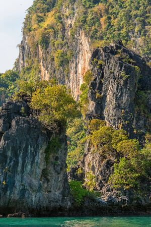 Close-up view of the cliff covered with tropical greenery on the shore in Asia Banco de Imagens