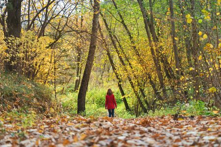 Woman walks alone in autumn forest